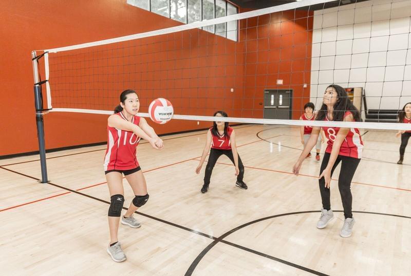 美国高中学习体育.jpg